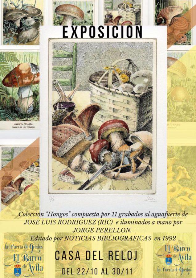 Exposici n setas octubre noviembre los sitios de - Paginas de casas rurales ...